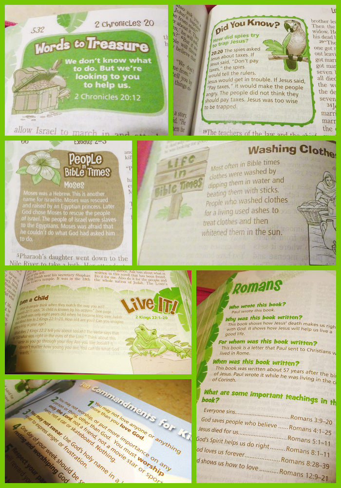 The Adventure Bible For Early Readers Great Bible For Kids